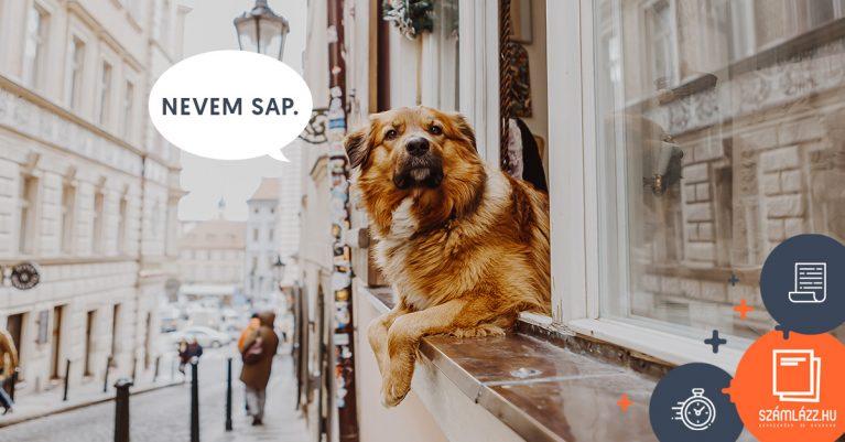 NAV online adatszolgáltatás a Számlázz.hu-val a SAP helyett